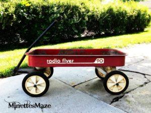 Wagon 300x225