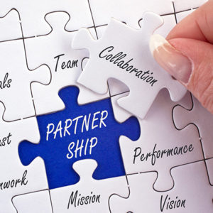 category 2 partnership 300x300